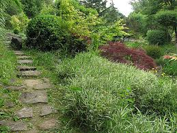 De zen tuin van erik borja drome blog for Jardin zen drome