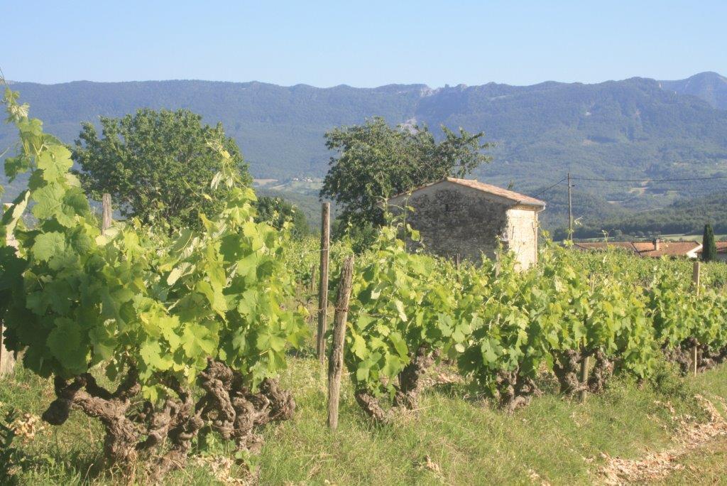 De Valleienroute, Die naar Aoute-sur-Sye (Auto, fiets)